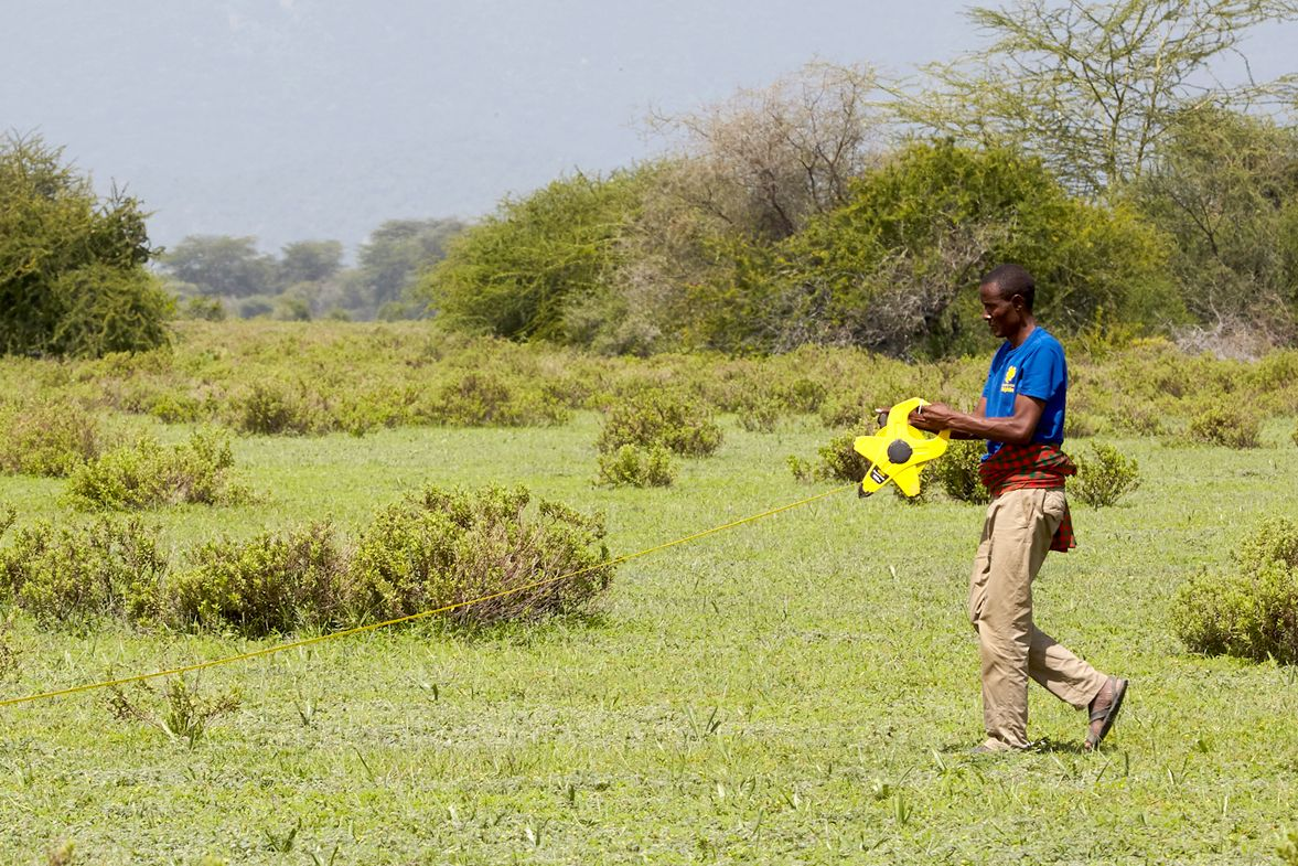 A community rangeland monitor works in a pasture in northern Tanzania